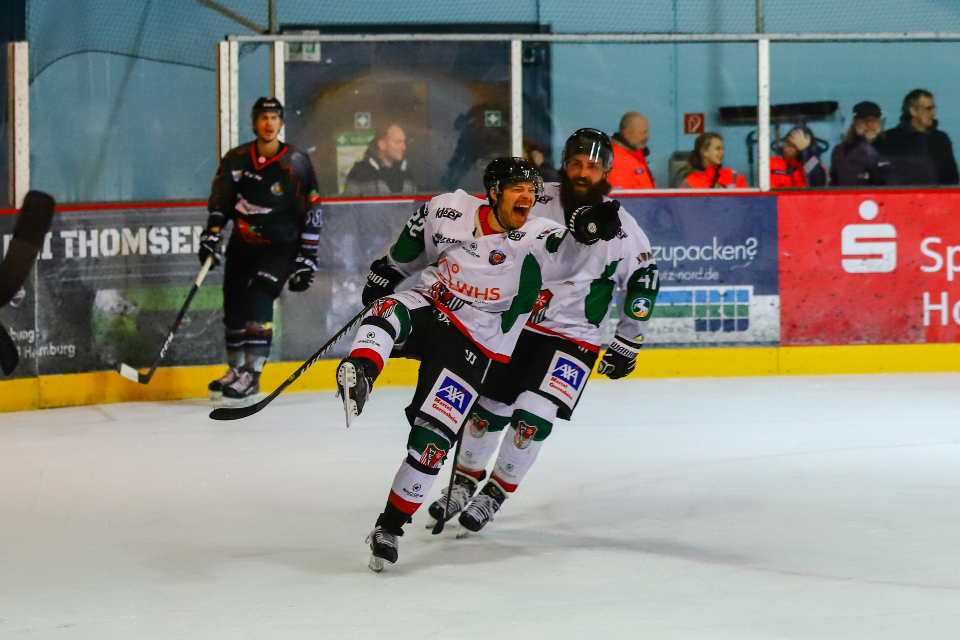 eishockey_012